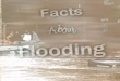 Facts about flooding